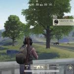 【荒野行動】アサルト小銃の性能一覧と特徴