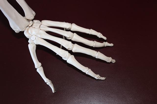 みかんが?骨粗しょう症の予防と治療に効果的な食べ物5選