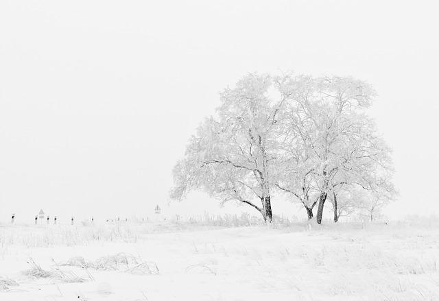 冬に流行・悪化する病気の予防と治療法